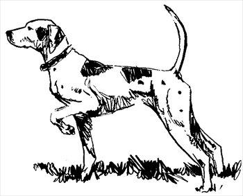 dog-point