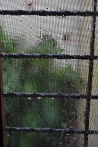 rainy day window